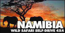 VIAGGI 4X4 - NAMIBIA SAFARI SELF-DRIVE 4X4